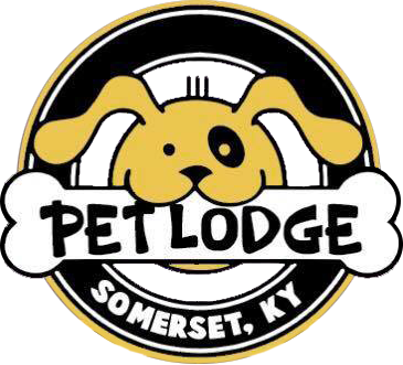 Somerset Pet Lodge